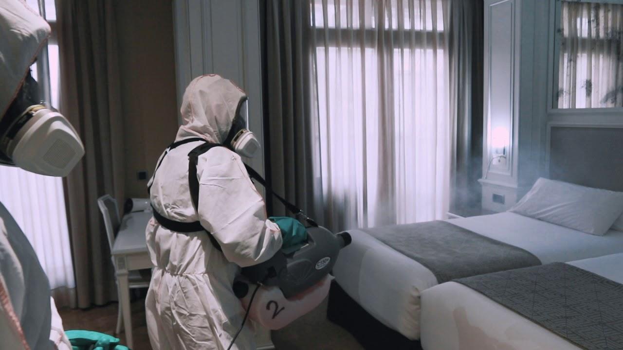 Prevención de plagas en los hoteles
